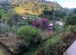 blumenau-casa-progresso-874590-3-609b7d2ee00901301679344
